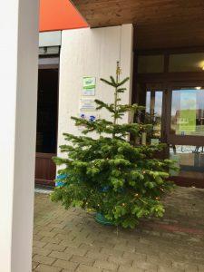 Weihnachtsbaum 2020 draußen